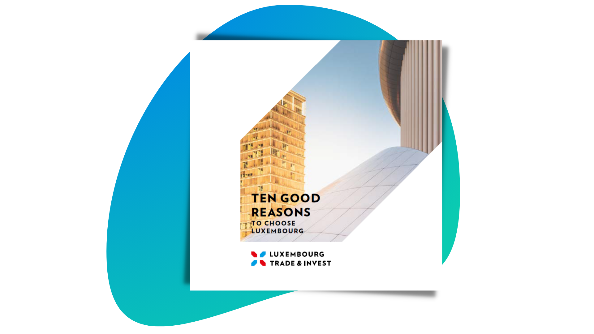 10 good reasons to choose lux-2